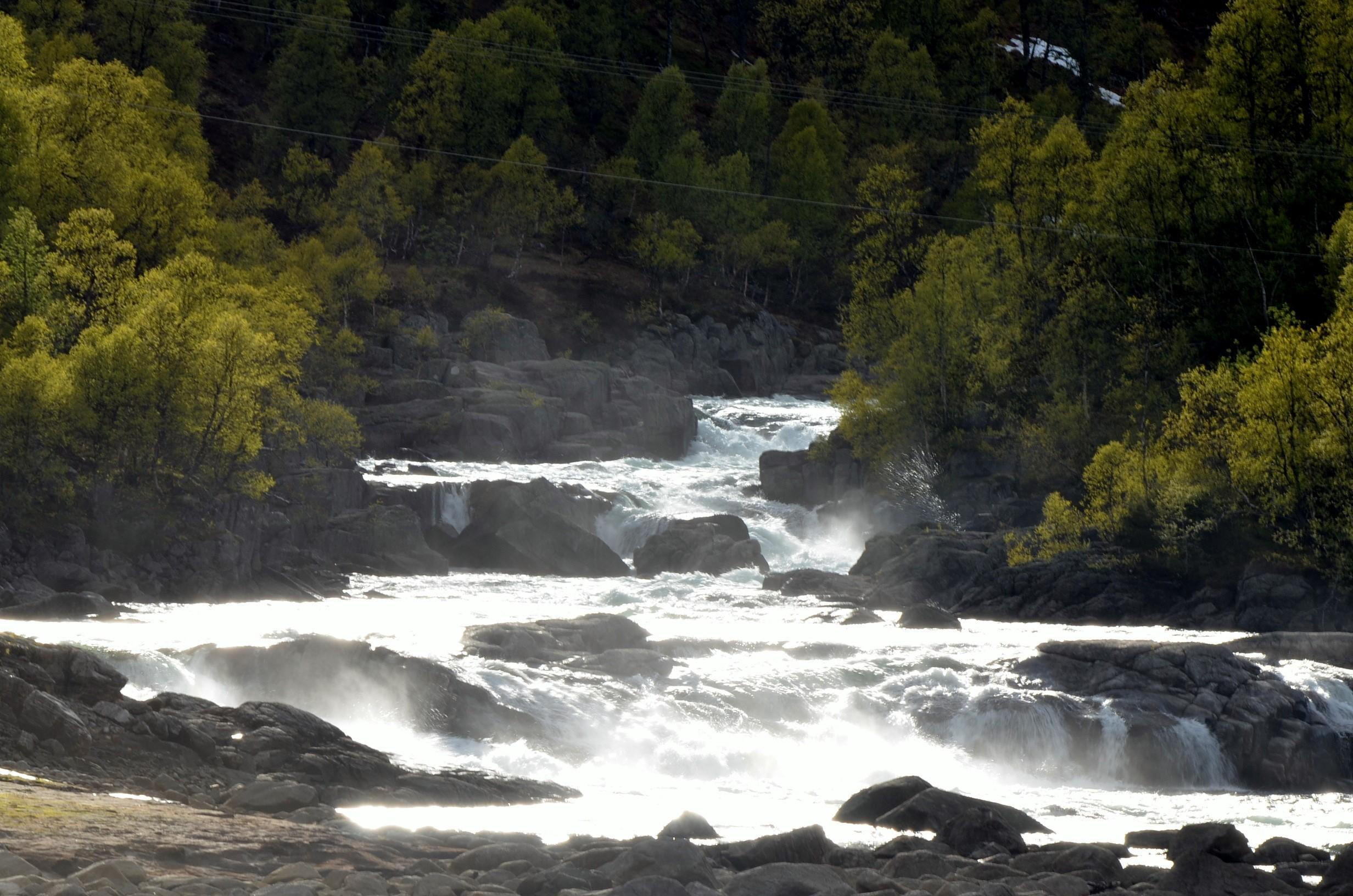 Gushing water - Iceland